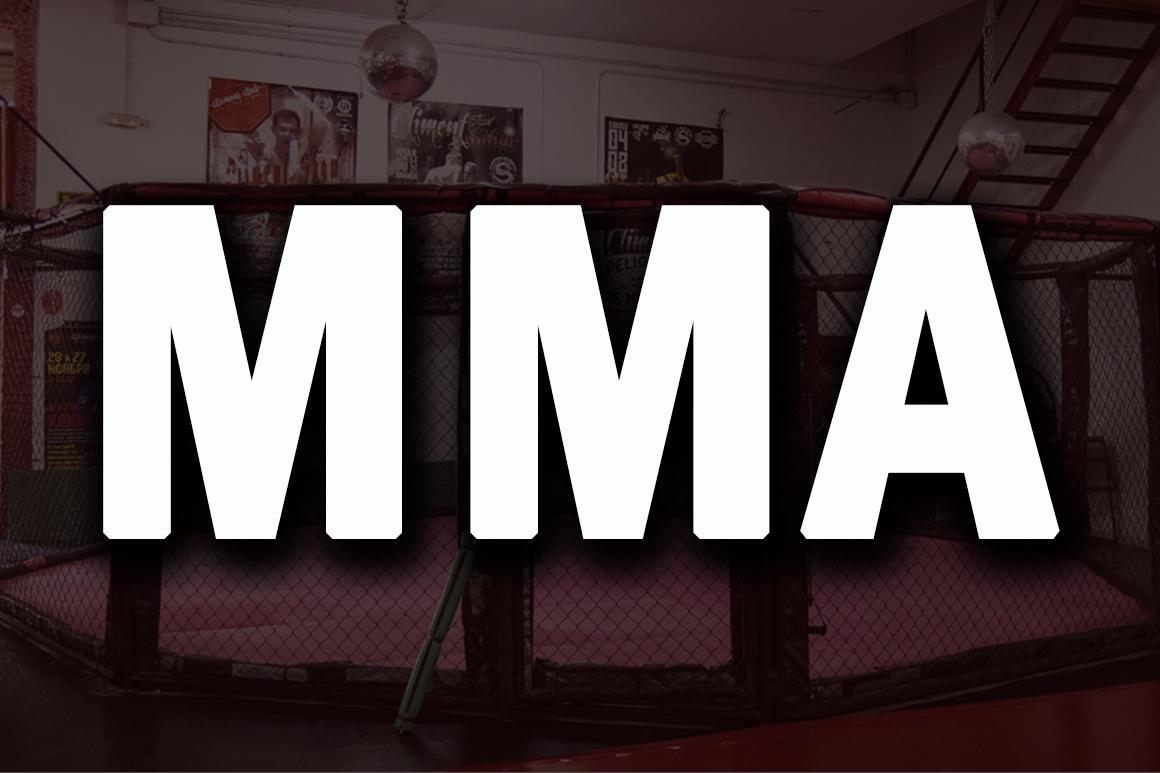 MMA – Artes Marciales Mixtas
